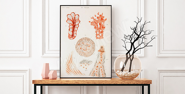 Poster corail pour le couloir