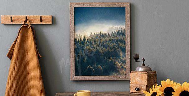 Poster forêt dans les montagnes