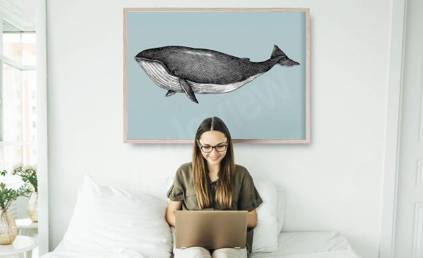 Poster image de baleine