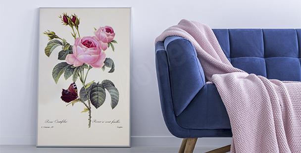 Poster nature et fleurs
