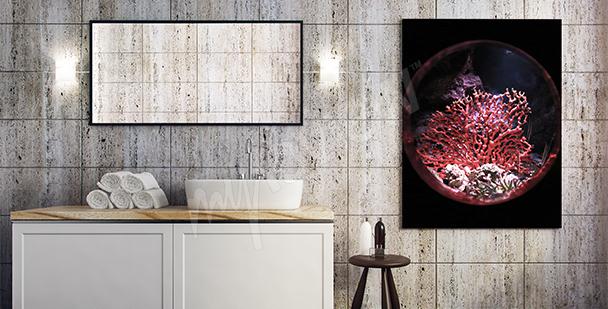 Poster récif corallien et aquarium