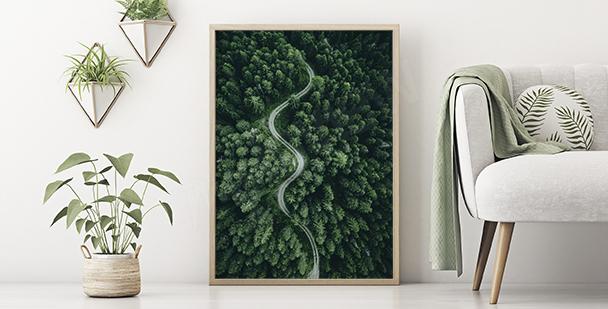 Poster vert nature