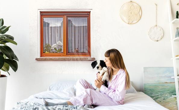 Sticker fenêtre avec chien