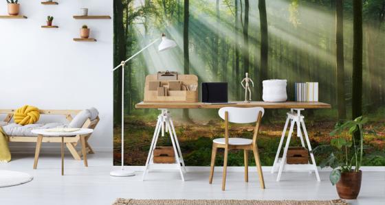 Votre bureau moderne à la domicile - découvrez comment l'agencer !